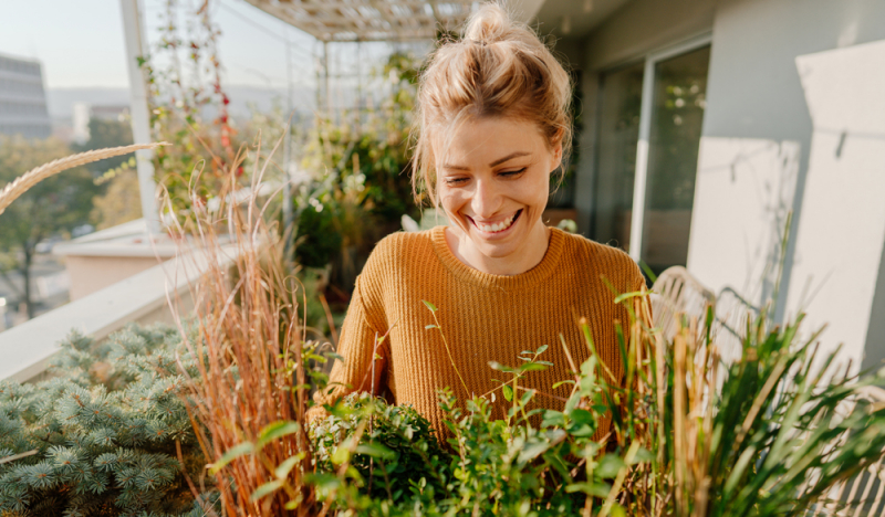 Il CBD può alleviare i sintomi delle allergie?